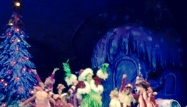 DR. SEUSS HOW THE GRINCH STOLE CHRISTMAS! THE MUSICAL MSG NYC @GrinchMusical @MSGnyc 4